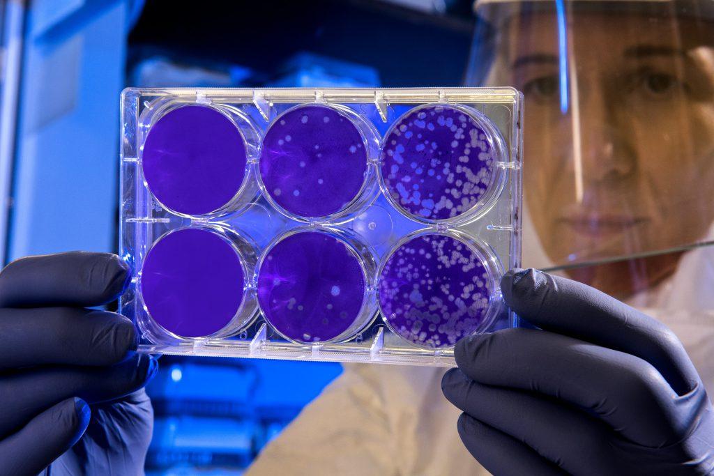 Coronavirus Stimulous Payment Seizure